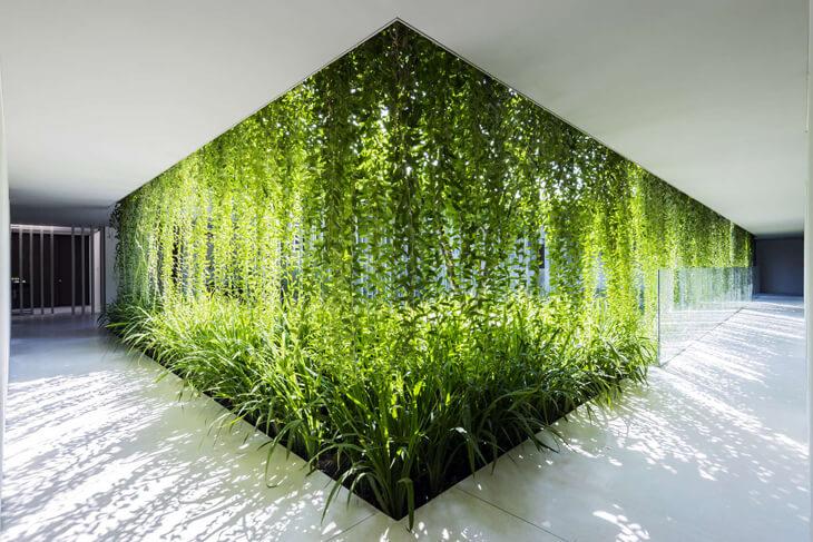 Vietnam'da Yeşil Cepheler