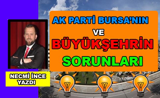 Necmi İnce Yazdı: Ak Parti Bursa'nın ve Büyükşehrin Sorunları