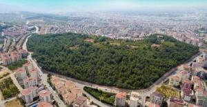 Nilüfer'de emlak satış fiyatları bir yılda yüzde 50'nin üzerine çıktı