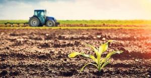 Toprak Yatırımında Buna Dikkat Etmeyen Kaybediyor!