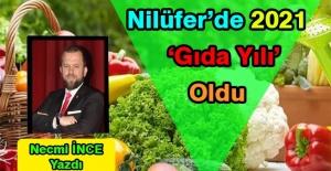 Necmi İnce Yazdı: Nilüfer#039;de...